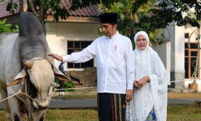 Usai Shalat Idul Adha, Jokowi Ajak Umat Tingkatkan Kesalehan Sosial