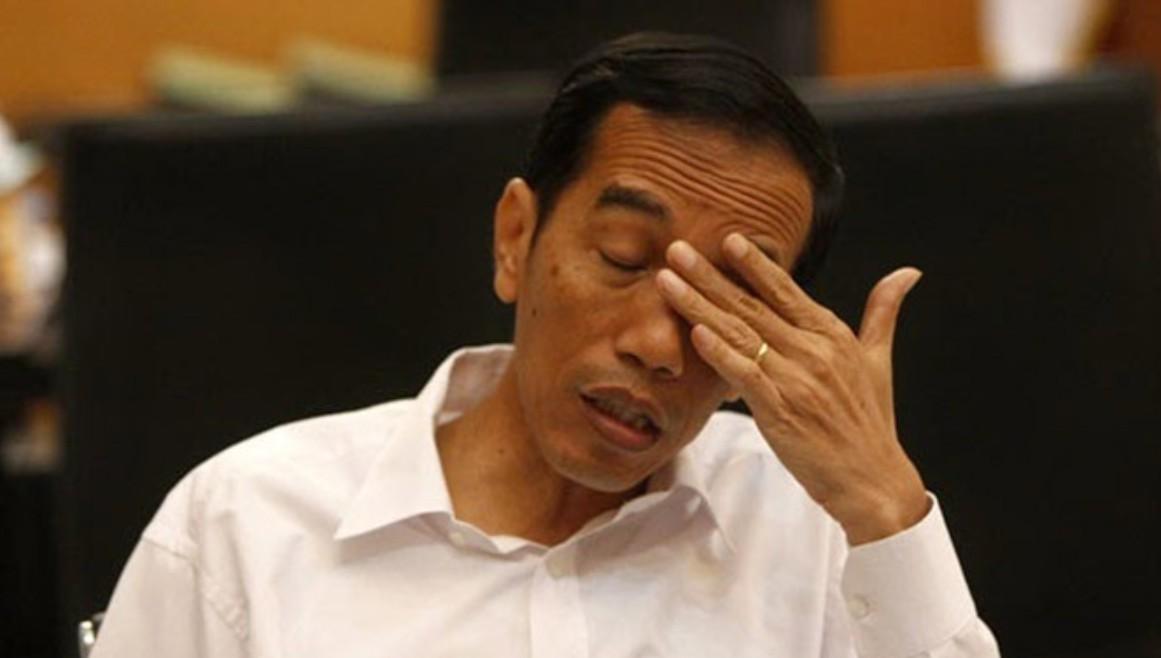 Akan Terbitkan Perpu, Fraksi PDIP Peringatkan Jokowi Hormati DPR